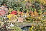 가을 풍경사진